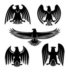 black eagle hawk or falcon heraldic symbol set vector image vector image
