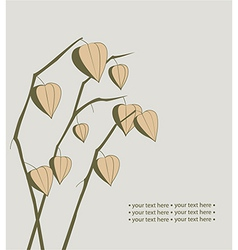 Decoration with physalis branches vector image
