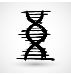 DNA grunge icon vector image