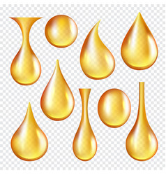 Oil transparent drops yellow liquid golden vector
