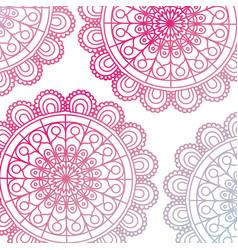 Pattern red gradient brilliant flower mandala vector