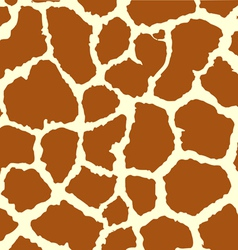 Patterned giraffe vector image