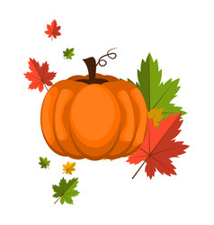 Pumpkin over white background vector