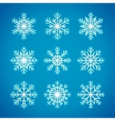 Snowflakes winter vector