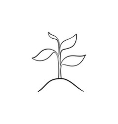 Sprout of plant hand drawn sketch icon vector