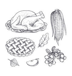 turkey dish and corn maize isolated icons vector image