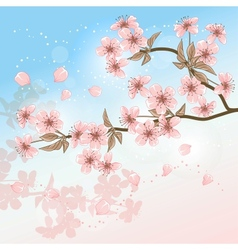 Cherry Tree Card with stylized blossom vector image vector image