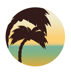 beach with tree palm vector image vector image