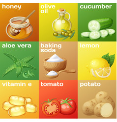 Facial mask ingredients for home face skin care vector