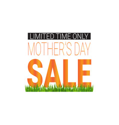 mothers day sale poster limited time only shopping vector image