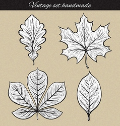 Retro set of 4 leaf sketch handmade Vintage leaves vector image