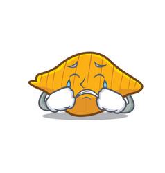 Crying conchiglie pasta mascot cartoon vector