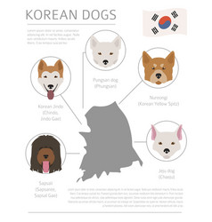 Dogs country origin korean dog breeds vector