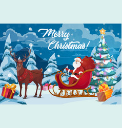 santa christmas gifts tree and reindeer sleigh vector image