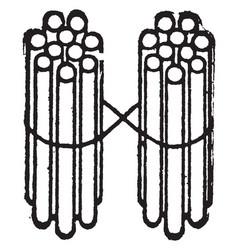 2 bundles of ten sticks vintage vector image vector image