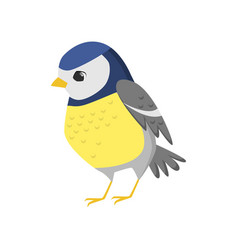 Cute titmouse with yellow breast template on white vector