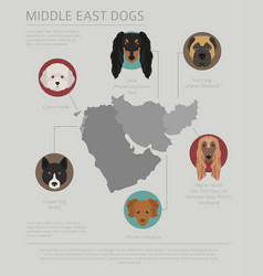 Dogs by country of origin near east dog breeds vector