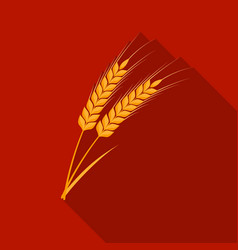 ears of wheat pasta icon in flate style isolated vector image vector image