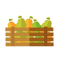 Fresh Pear at the Market vector image