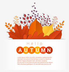 hello autumn with colorful leaves and fruits vector image