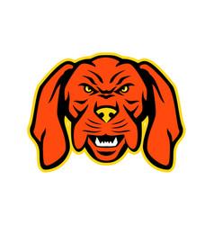 Hungarian vizsla dog mascot angry vector