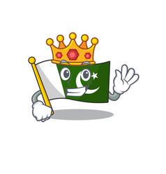 King flag pakistan isolated in cartoon vector