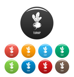 Turnip icons set color vector