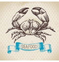 Vintage sea background Hand drawn sketch seafood vector image