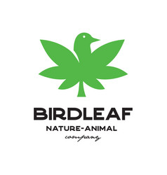 bird leaf logo vector image