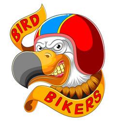 bird wearing helmet racer vector image
