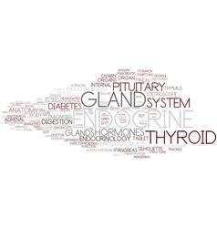 Endocrine word cloud concept vector