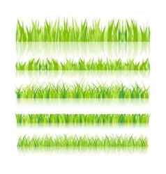 Set with realistica grass vector image