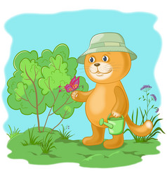 cat gardener with a butterfly vector image