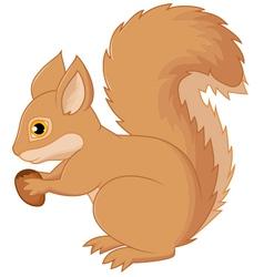 Squirrel cartoon holding nut vector image vector image