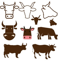cow labels vector image