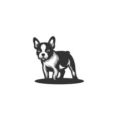 dog black color concept design template vector image