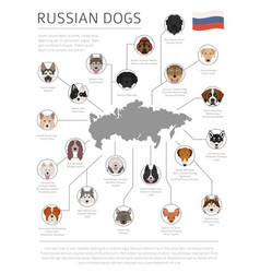Dogs country origin russian dog breeds vector