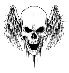Draw skull with wings tattoo vector