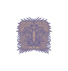 Great philippine eagle head mono line vector