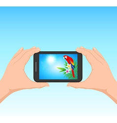 Hands and phone vector