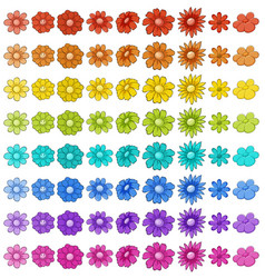 Isolated set flowers vector