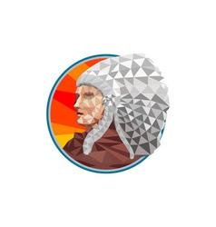 Native American Indian Chief Warrior Low Polygon vector image