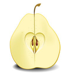 pear fruit heart vector image vector image