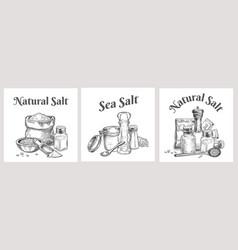 sea salt labels natural and organic salting vector image