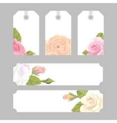 Set floral decorative elements vector