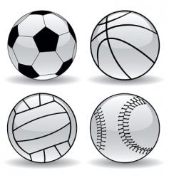 Sport balls vector