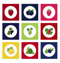 round berry icons on colorful background vector image vector image