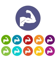 Biceps set icons vector image