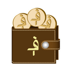 Brown wallet with afghani coins vector