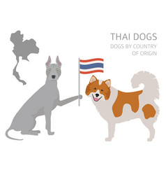 Dogs country origin thai dog breeds vector